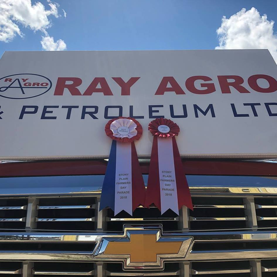 Ray Agro & Petroleum Ltd logo