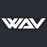 WAV Inspection Ltd logo