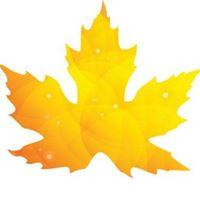 Alliance Borealis Canada Corp logo