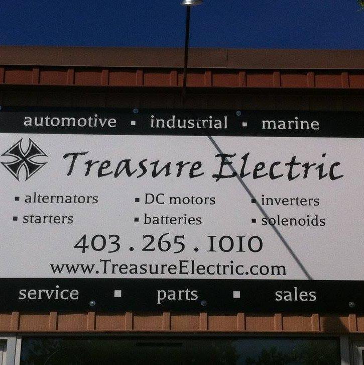 Treasure Auto Electric logo