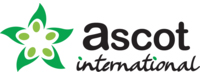 Ascot International Services LLC logo