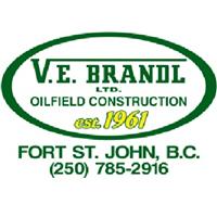 Ve Brandl Ltd logo