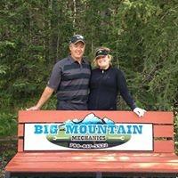 Big Mountain Mechanics logo