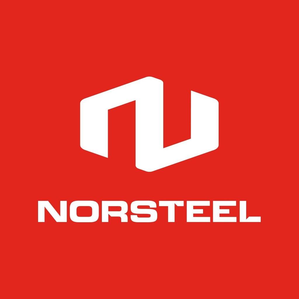 Norsteel Building Systems Ltd logo