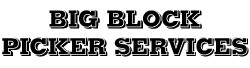 Big Block Picker Services Ltd logo