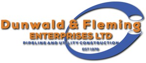 Dunwald & Fleming Enterprises Ltd logo