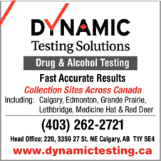Yellow Pages Ad of Dynamic Testing Solutions Ltd