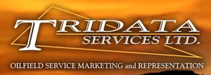 Tridata Services Ltd logo